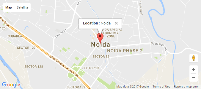 Show marker on google map using latitude and longitude with info window